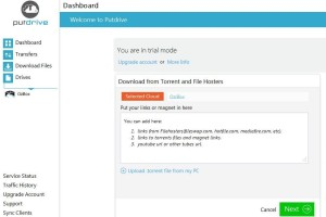 Download Torrent Files With IDM Using Put Drive